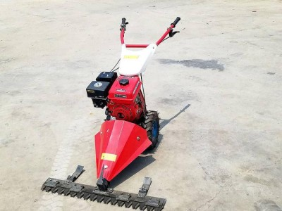 手推式农用汽油剪草机 宽幅草坪清理剪草机 农场清理杂草剪草机
