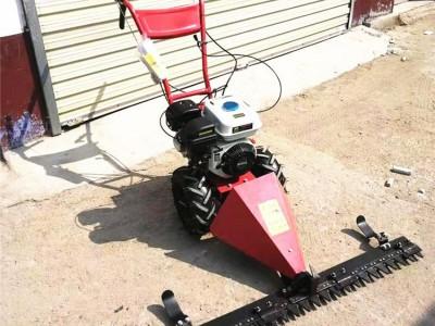 带档位自走式草坪机 荒地杂草清理修剪机 公园手推式割草机